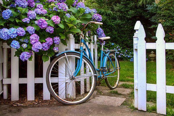 Hàng rào đơn giản bằng gỗ-nhựa